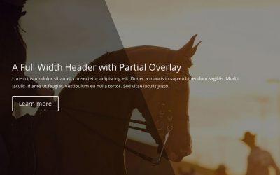 A Full Width Header with Partial Overlay